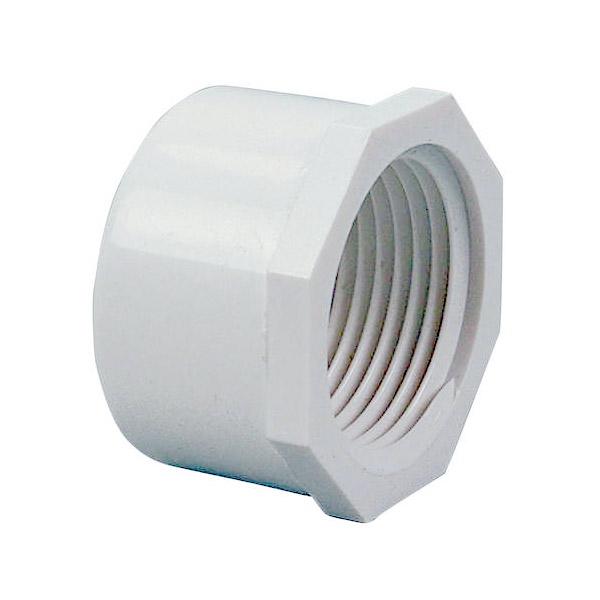 1 PVC Threaded Cap